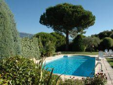 Zicht vanuit tuin op zwembad